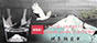 [超稀有!] 江戶硝子富士山杯 玻璃杯 親子鶴圖案 附木箱 [完全限定商品]